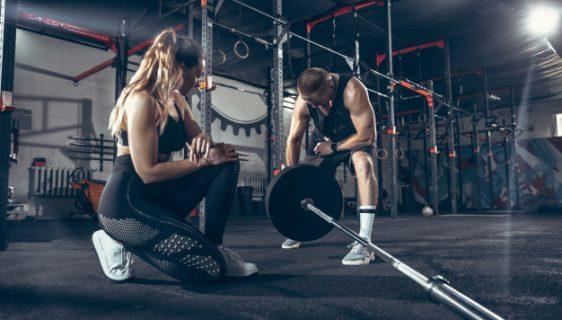 vægtskiver